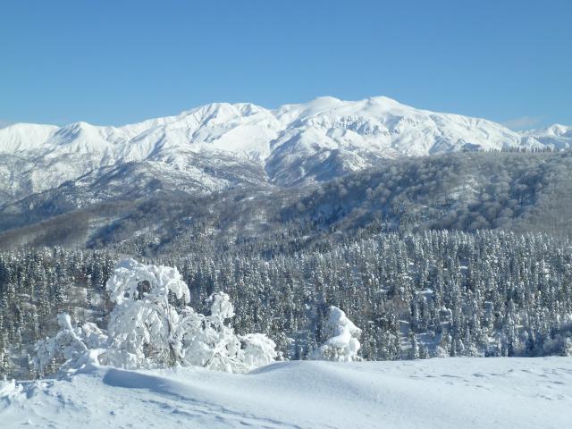 原高山からの白山2